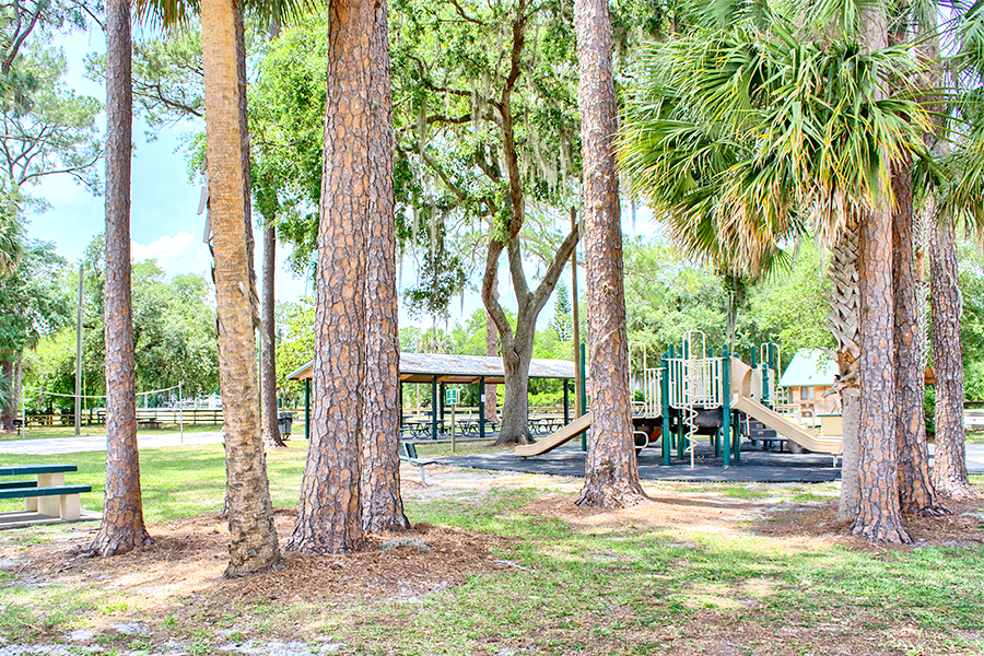 Dog Parks In Lake Mary Fl