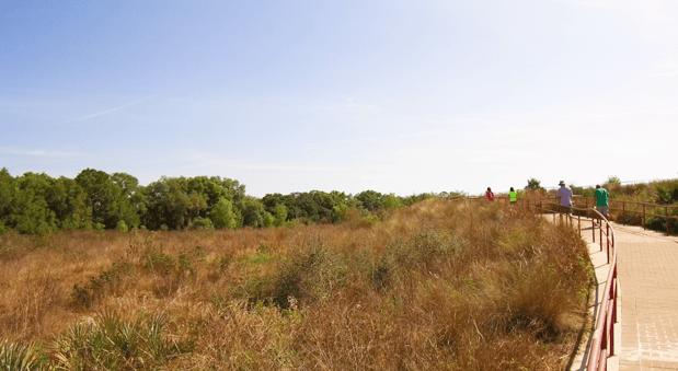 hikers in pear park leesburg florida.png