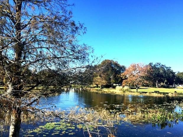 historic landmark in leesburg florida venetian gardens.jpeg