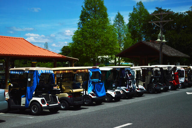 golf_carts_in_the_villages_florida.jpg