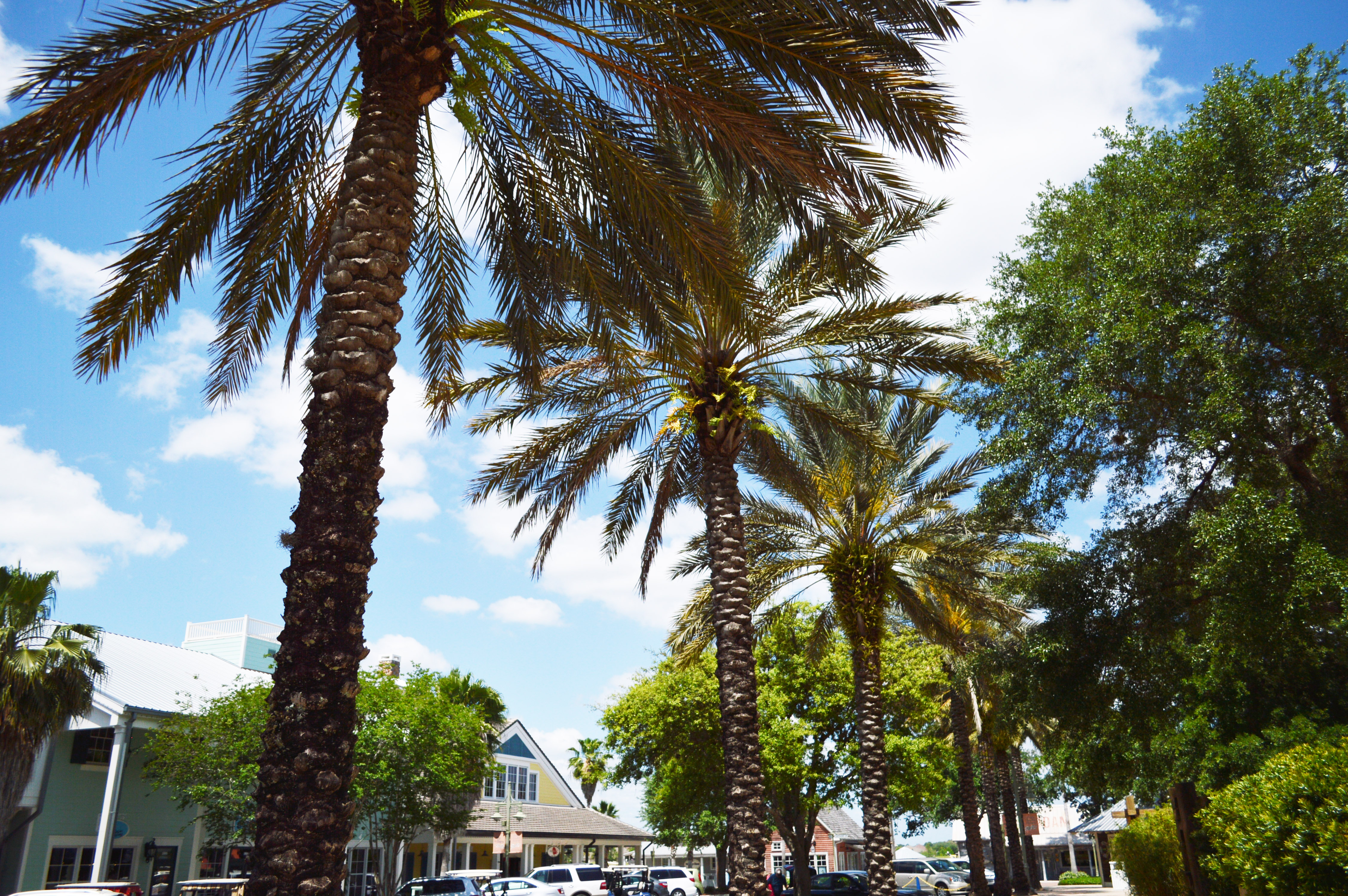 one_of_the_best_places_to_retire_in_florida_the_villages