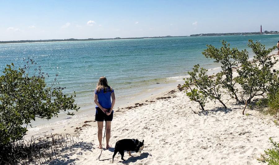 new smyrna dog beach volusia county