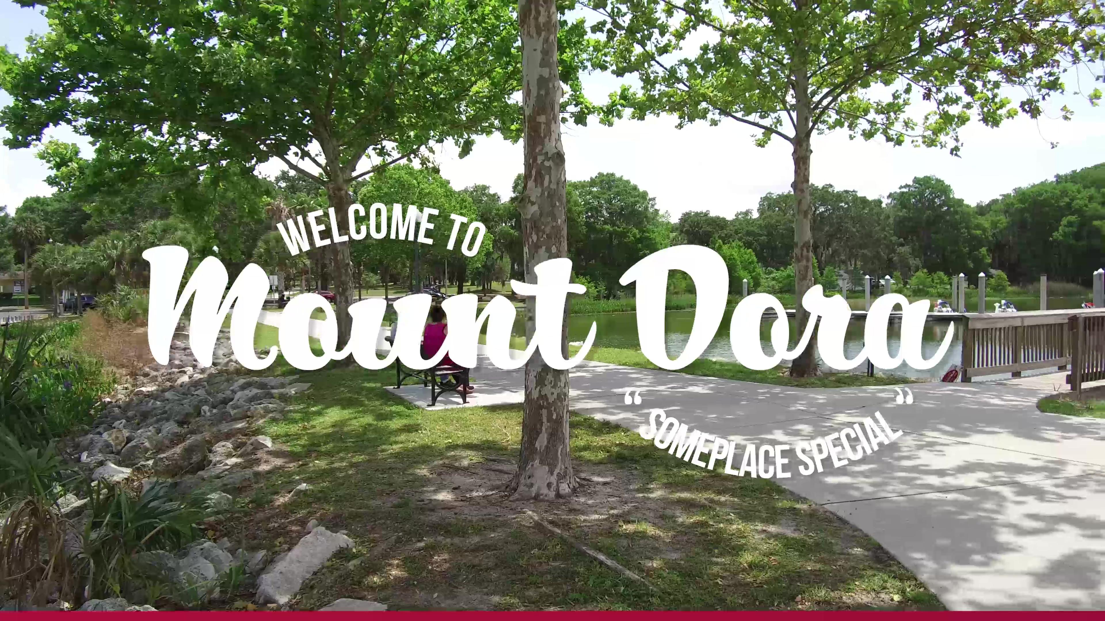 Call Mount Dora Home-thumb