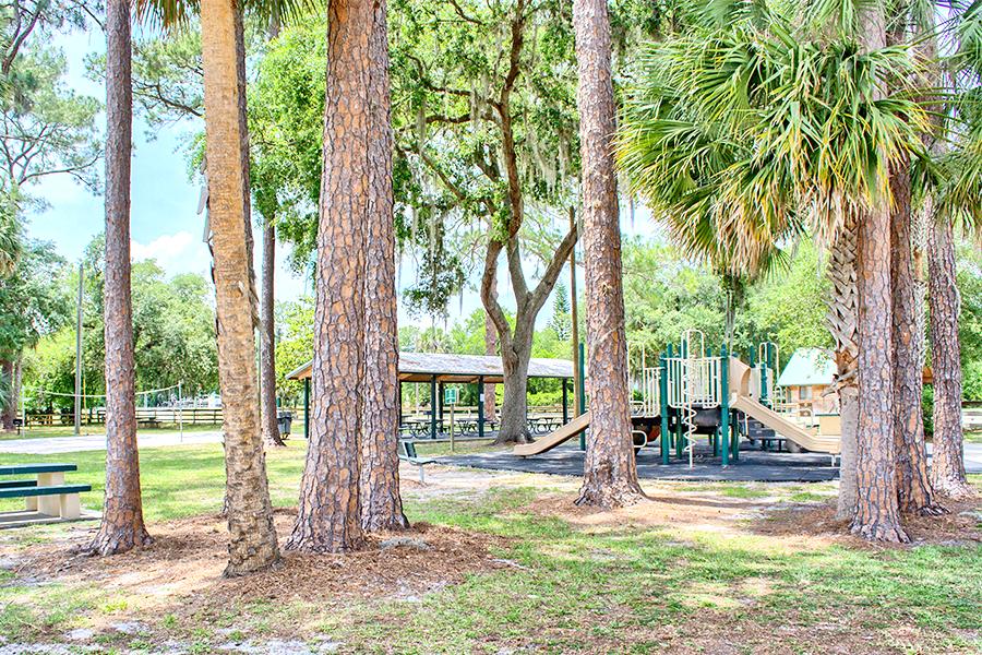 park_in_deland_florida.png