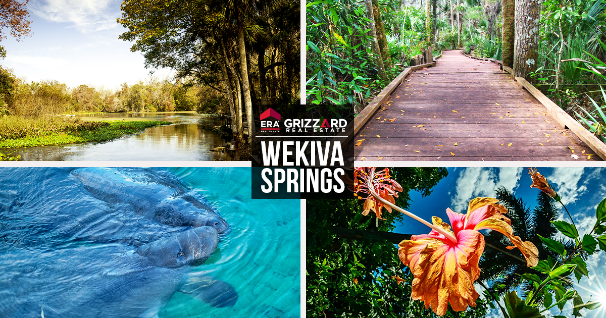 wekiva springs real estate for sale