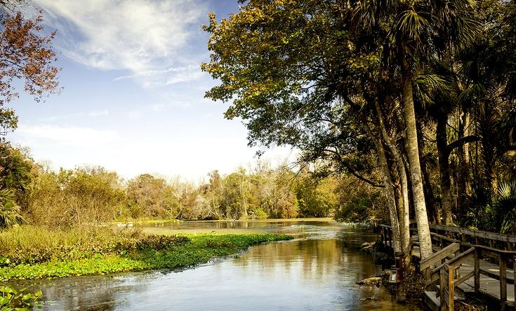 wekiwa springs seminole county florida