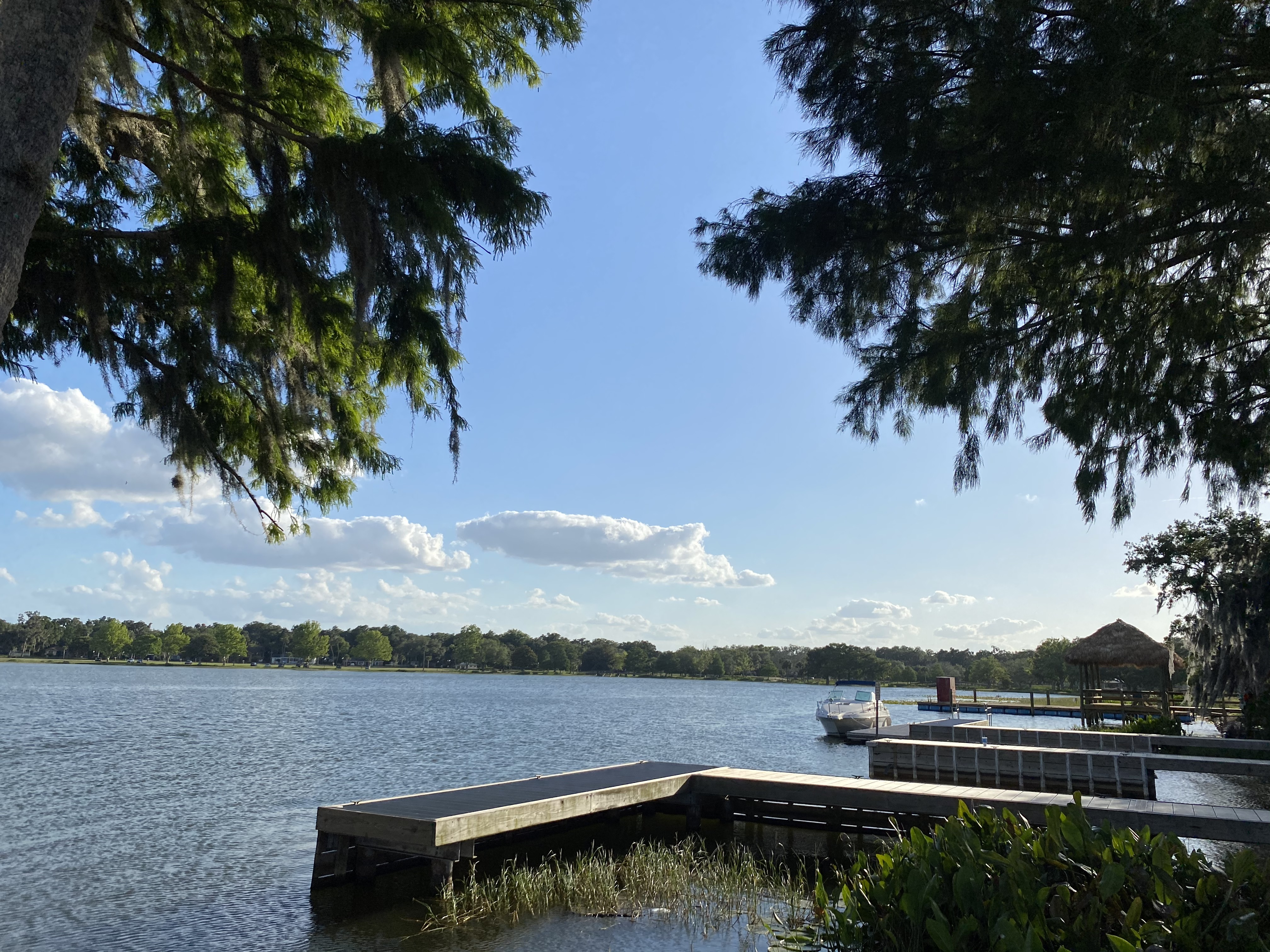 the leesburg boat club